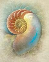 Aquatica II Fine Art Print