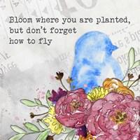 Bloom & Fly II Framed Print