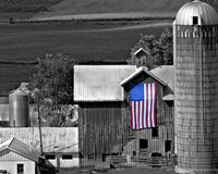 Flags of Our Farmers XI Fine Art Print
