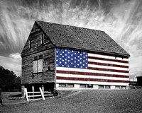 Flags of Our Farmers XIV Fine Art Print