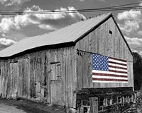 Flags of Our Farmers IV Fine Art Print