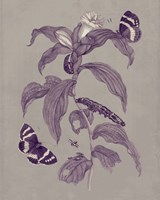 Nature Study in Plum & Taupe I Fine Art Print