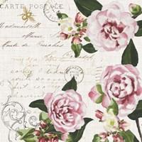 Ephemeral Roses II Framed Print