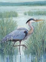 Wetland Heron I Fine Art Print