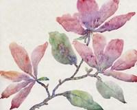 Flowering Branch I Framed Print