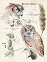 Wildlife Journals I Fine Art Print