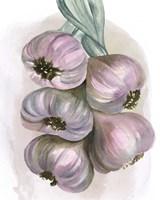 Garlic Braid II Framed Print