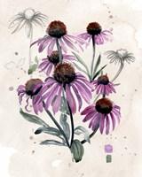 Purple Wildflowers I Framed Print