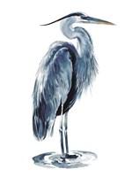 Blue Blue Heron I Fine Art Print