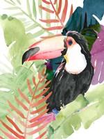 Toucan Palms I Fine Art Print