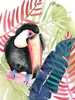 Toucan Palms II Fine Art Print