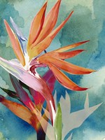 Vivid Birds of Paradise II Fine Art Print