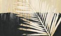 Golden Raffia II Framed Print