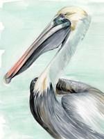Turquoise Pelican II Framed Print