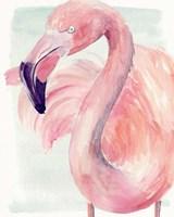 Pastel Flamingo I Framed Print