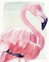 Pastel Flamingo II Fine Art Print