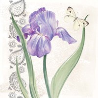 Flowers & Lace III Framed Print