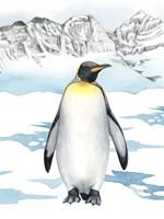 Arctic Animal I Framed Print