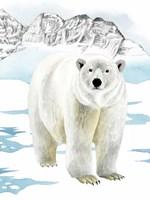 Arctic Animal II Framed Print