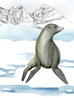 Arctic Animal IV Fine Art Print