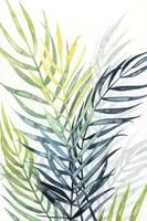 Sunset Palm Composition II Framed Print