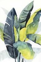 Sunset Palm Composition III Framed Print