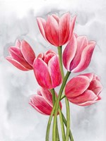 Tulip Tangle I Framed Print