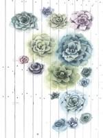 Shiplap Succulent Cluster I Framed Print