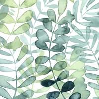 Gossamer Palms I Framed Print