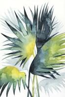 Sunset Palm Composition IV Framed Print