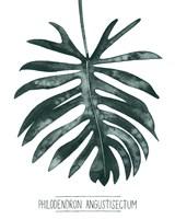 Gemstone Tropicale I Framed Print