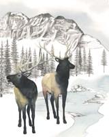 Winter Elk II Framed Print
