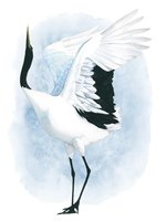 Dancing Crane I Fine Art Print