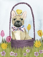 Puppy Easter III Fine Art Print