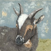 Farm Life-Grey Goat Fine Art Print