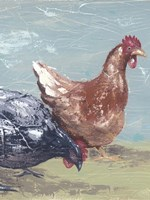 Farm Life-Chickens I Fine Art Print