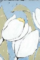 White Tulip Triptych II Framed Print