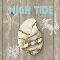 High Tide Shoreline I Framed Print