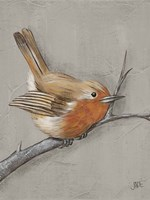 Winter Bird II Fine Art Print
