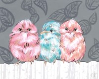 Bird Trio II Fine Art Print