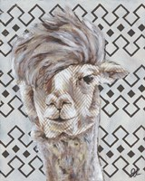 Animal Patterns II Framed Print