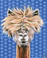 Animal Patterns IV Framed Print