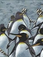 Colony of Penguins I Framed Print
