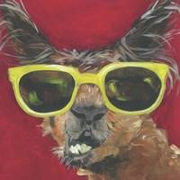 Dapper Animal IV Framed Print