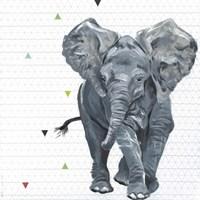 Animal Baby III Fine Art Print