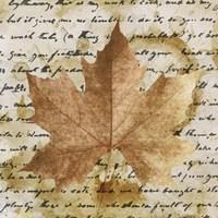 Earth Leaf I Fine Art Print