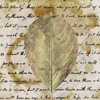 Earth Leaf II Fine Art Print