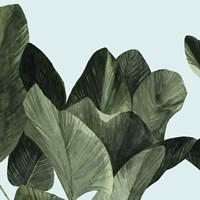 Celadon Palms I Framed Print