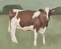 Bovine Field II Fine Art Print