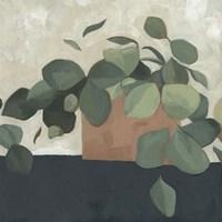 Jade Hoya II Fine Art Print